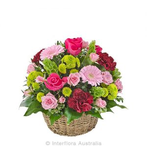 Lovely basket of mixed flowers and colours