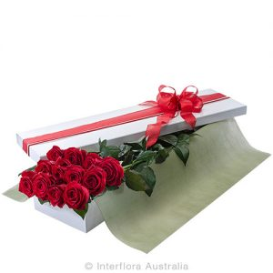 12 simple roses in a beautifully presented box