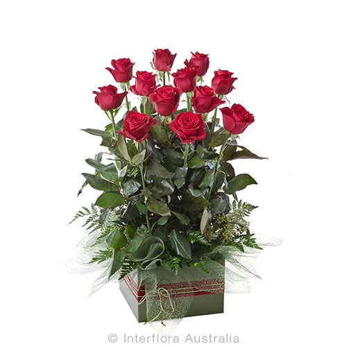12 red roses arranged in a square box