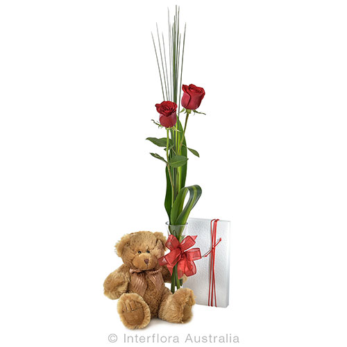 2 roses in a glass vase with a cuddly small teddy