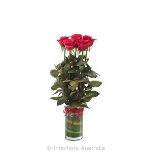 6 roses in a cylinda vase