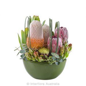 Modern arrangement of native flowers